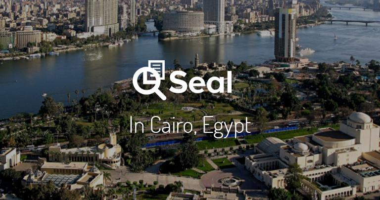 Seal in Cairo, Egypt